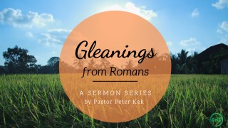 Gleanings from Romans Series Graphic
